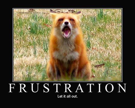 frustrationgif.jpg